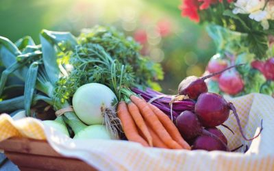 The health benefits of eating more vegetables